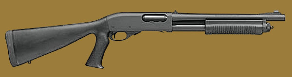 Дробовик Remington 870P Entry